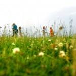 Blumenwiese im Vordergrund, Hintergrund spielende Kinder - Foto: Lisa Mäder