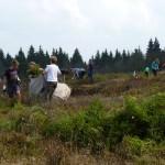 Moorpflege- Foto: Jens-Karsten Wykowski